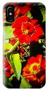 Group Of Small Red Zinnia's IPhone Case