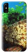 Grouper In Wreck IPhone Case