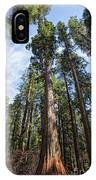 Grove Of Big Trees IPhone Case