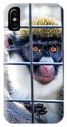 Guenon Monkey IPhone Case