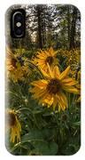 Hamblen Park Sunshine IPhone Case