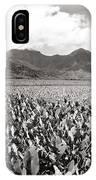 Hanalei Taro Fields IPhone Case