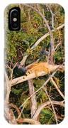 Hanging Iguana IPhone Case