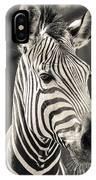 Hartmann's Mountain Zebra 2 IPhone Case