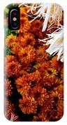 Harvest Mums IPhone Case