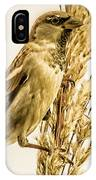 Harvest Time Iv IPhone Case