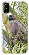 Hawaiian Io IPhone Case