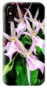 Hawaiian Orchid 31 IPhone Case