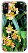 Hawaiian Orchid 36 IPhone Case