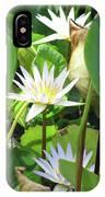 Hawiian Water Lily 01 - Kauai, Hawaii IPhone Case