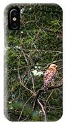 Hawk Drying Out IPhone Case