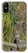Hawk In Hiding IPhone Case