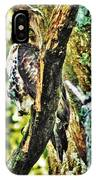 Hawk On Blue Hole Road IPhone Case