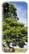 Haworth Moor Sycamore IPhone Case