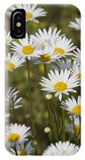 He Loves Me Daisies IPhone Case