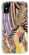 Heads Or Tails IPhone Case