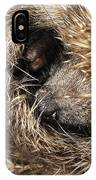 Hedgehog Curled Up IPhone Case
