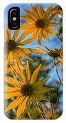 Helianthus Giganteus IPhone Case