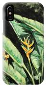Heliconia Flower 7 IPhone Case