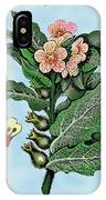 Henbane IPhone Case