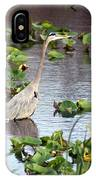 Heron Fishing In The Everglades IPhone Case