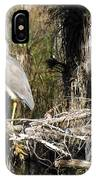 Heron In Everglades IPhone Case
