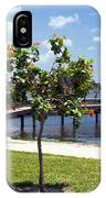 Hibiscus Rosasinensis With Fruit On The Indian River In Florida IPhone Case