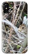 Hidden Hare IPhone Case