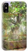 Hidden Treasures IPhone Case