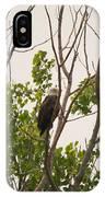 Hiding In Plain Sight IPhone Case