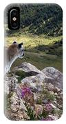 High And Wild IPhone Case
