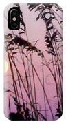 Hilton Head Sunset IPhone Case