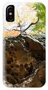 Hinkleys Hollows IPhone Case