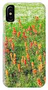 History Of The Paintbrush IPhone Case