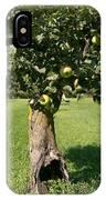 Hollow Apple Tree IPhone Case