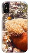 Home Of The Clown Fish 4 IPhone Case
