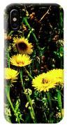 Honey Bee Haven IPhone Case