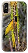 Hooded Oriole V1834 IPhone Case
