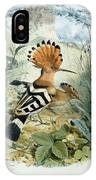 Hoopoe IPhone Case
