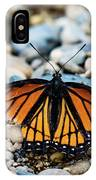 Hope Of The Monarch Butterfly IPhone Case