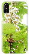 Horse Chestnuts IPhone Case