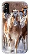 Horse Herd In Snow IPhone Case