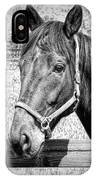 Horse Portrait In Black And White IPhone Case