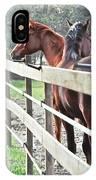 Horse Whisperers IPhone Case