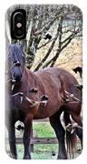 Horsebirds IPhone Case