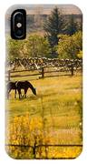 Horses Grazing In The Late Afternoon IPhone Case