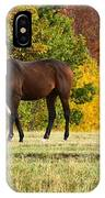 Horses In Autumn IPhone Case