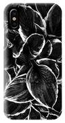 Hosta In Black And White IPhone Case