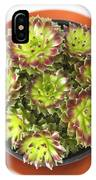 Houseleek IPhone Case