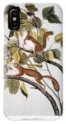 Hudsons Bay Squirrel IPhone Case